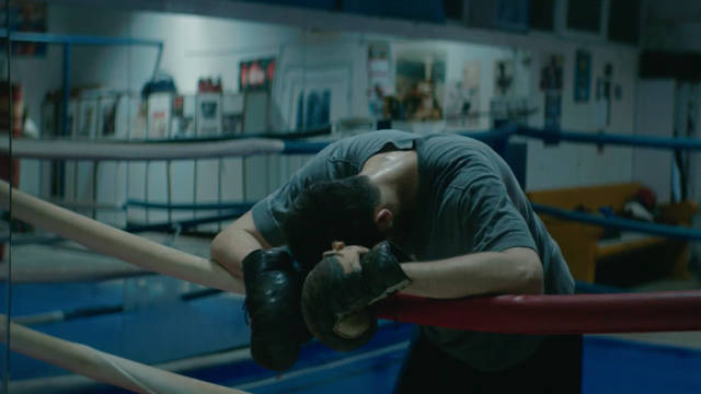 National Lottery: Boxer
